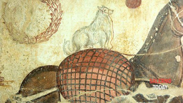 I colori dell'antica Paestum in mostra al Museo archeologico