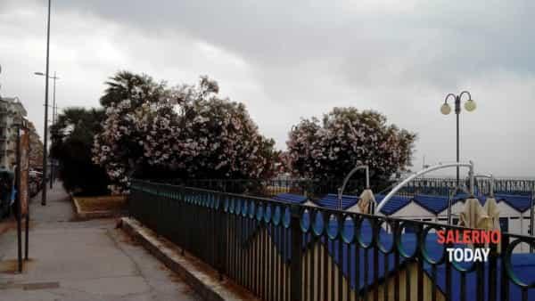 foto_3_giardini mercatello-2