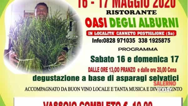 Festa degli asparagi selvatici all'Oasi degli Alburni