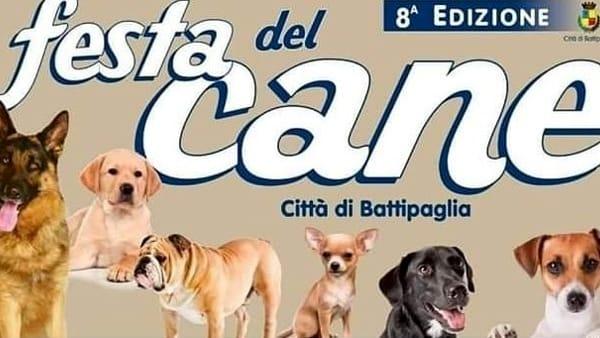 Battipaglia ospita la festa del cane: le info utili e il programma