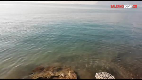Il mare da blu diventa marrone in via Lungomare Marconi: la videosegnalazione