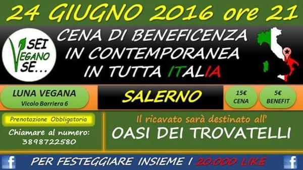 Cena di beneficenza per i pelosi al Luna Vegana di Salerno