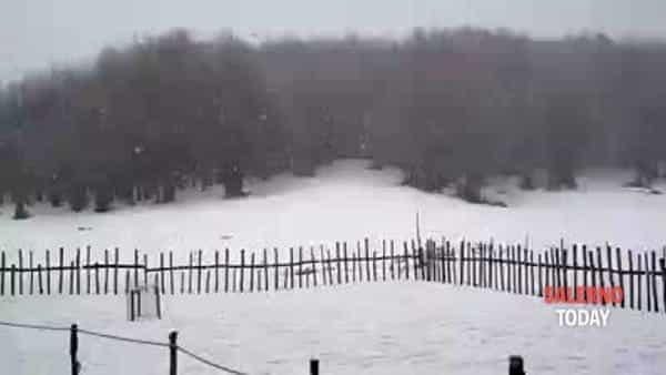 Nevicata al Rifugio Cervati: il video