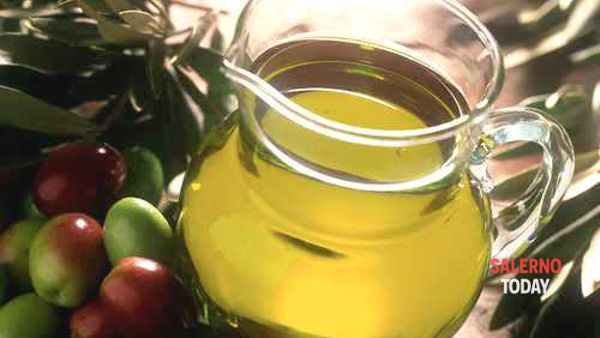 """New York International Olive Oil Contest"": premiato l'oro giallo del Cilento"